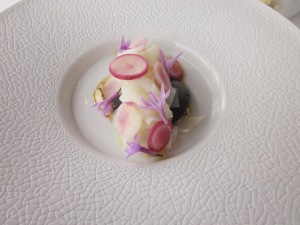 Second course - Line caught iki jime Tasmanian squid, squid ink custard, society garlic, pink turnips