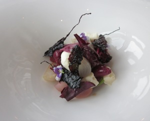 First course - Salad of preserved wild cherries, albino and chioggia beetroots, radish, creme fraiche, violets