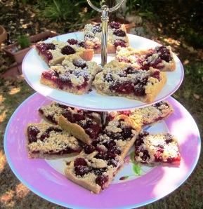 Raspberry crumble slice