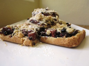 Fruit mince slice 1